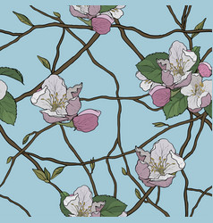 beautiful seamless pattern of blooming branches vector image