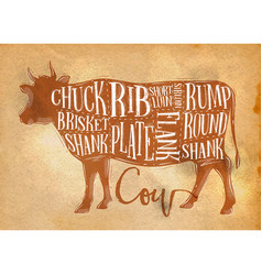beef cutting scheme craft vector image