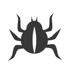 bettle scarab insect vector image