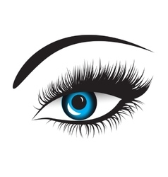 Blue eyes with long lashes vector