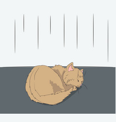 cat lies in the room vector image