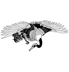 flying japanese crane black and white vector image