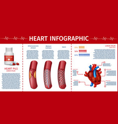 heart and cardiovascular therapy infographic page vector image
