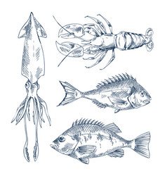seafood and fish engraving vector image