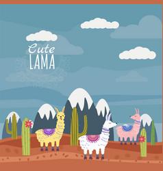 Set cute lama and cactus mountain vector