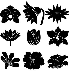 Set of black flowers vector