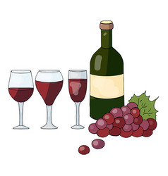 bottle with wine grapes and wine glasses vector image