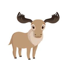 Cute deer animal cartoon character vector