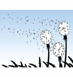 Dandelion clocks vector
