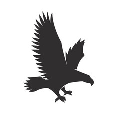 flying eagle isolated on white background vector image
