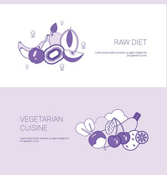Raw diet and vegetarian cuisine concept template vector