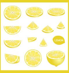 set of fresh yellow lemon in various slice styles vector image