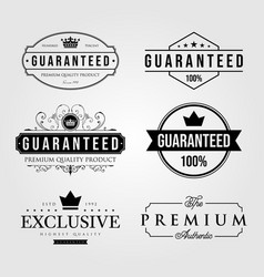 set vintage premium retro guaranteed label vector image