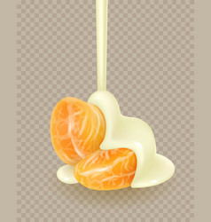 Tangerine slices in white sauce flowing vector