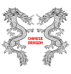 Two chinese dragons hand drawn contour vector