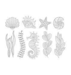 underwater nature set adult zentangle coloring vector image