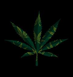 marijuana leaf on black vector image