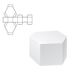 Diecut Craft Box 1 vector image
