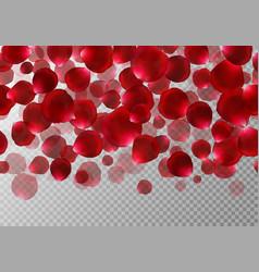 Falling red rose petals vector