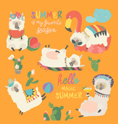 Funny alpaca llama resting in summer vacation vector