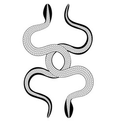 Gothic two symmetric entwined snakes vector