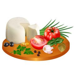 mozzarella cheese with tomatoes garlic and onions vector image