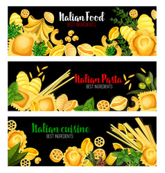 pasta with herbs banner of italian cuisine design vector image