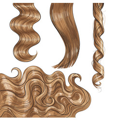 shiny long blond fair straight and wavy hair vector image