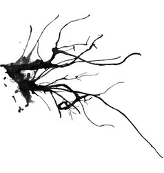 watercolor drawing of a bare branch vector image