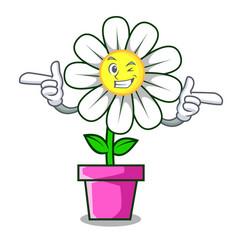 Wink daisy flower character cartoon vector