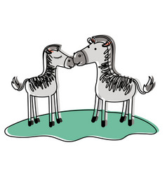 Zebra couple over grass in watercolor silhouette vector