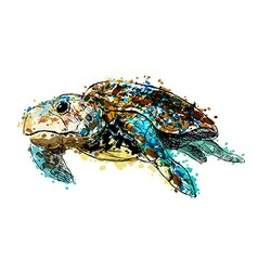 Colored hand drawing caretta vector image vector image