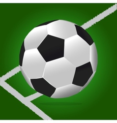 Soccer Ball With Green Background and Lines vector image vector image