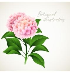 Botanical Vintage floral card vector