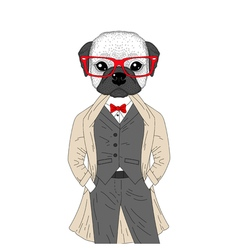 Brutal french bulldog in elegant classic suit with vector