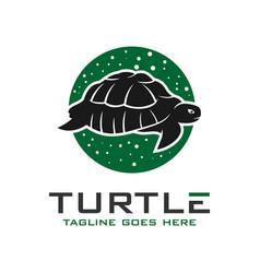 circle turtle logo design template vector image