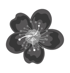 cute lotus flower isolated vector image