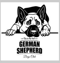 German shepherd - for t-shirt vector