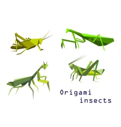 Green origami grasshoppers and mantis vector