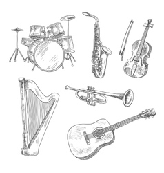 Musical instruments sketches for arts design vector image vector image