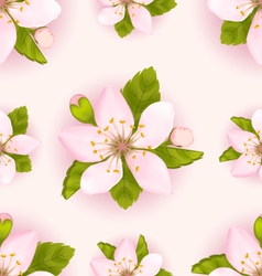Seamless Pattern with Cherry Flowers Repeating vector