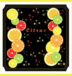 Set citrus vector