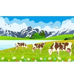 Three cows in a landscape and farm vector
