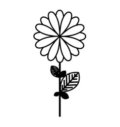 figure flower with petals and leaf icon vector image