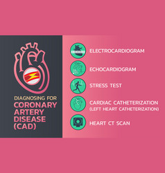 diagnosing of coronary artery disease cad icon vector image vector image
