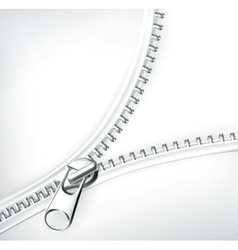 Zipper white vector image vector image