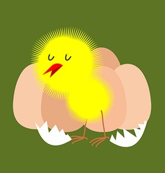 Egg and chicken Furry chick hatched from an egg vector image vector image
