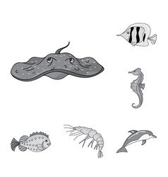 a variety of marine animals monochrome icons in vector image