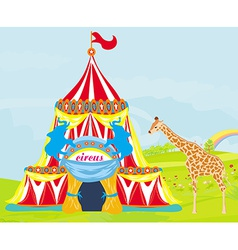 circus with animals vector image
