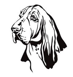 Decorative portrait basset hound vector